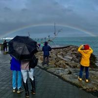 Reykjavik Rainbow (2019)
